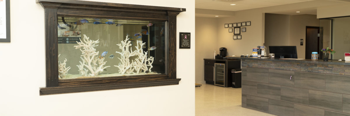 Meadowbrook front office with check-in and aquarium.