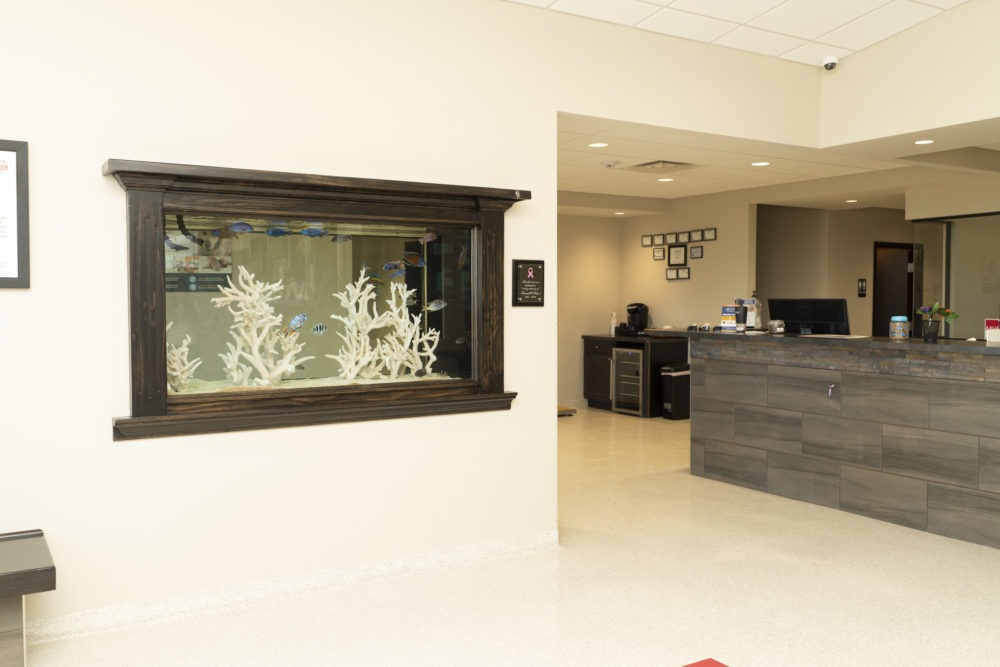 Meadowbrook Veterinary Clinic office with front-desk and small aquarium.