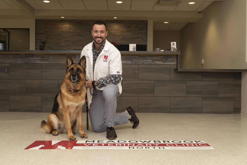Chris Couri, DVM with German Shepherd on clinic floor.