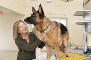 Annette Gutzwiller, DVM with new German Shepherd patients