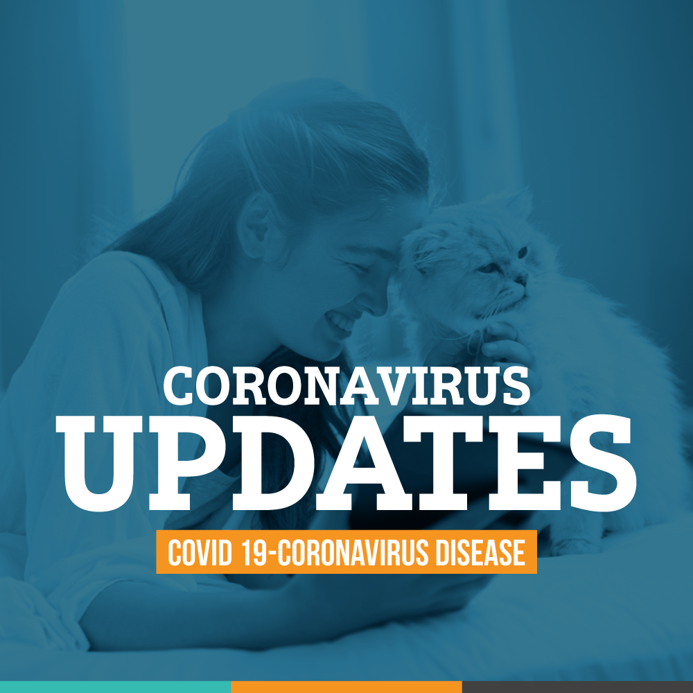 Meadowbrook Veterinary Clinic Coronavirus updates for visitors.